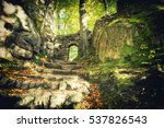 gate to the enchanted forest   Shutterstock . vector #537826543