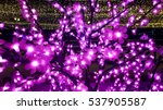 Electric Pink Led Flowers On...