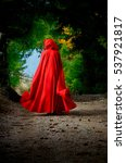 red riding hood in the forest | Shutterstock . vector #537921817