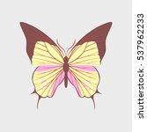 colorful icon of butterfly... | Shutterstock .eps vector #537962233