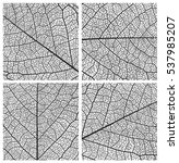 Leaf Vector Texture Pattern...