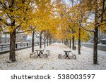 walkway on the first snow with... | Shutterstock . vector #538003597