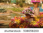 beautiful flowers background | Shutterstock . vector #538058203