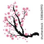 vector illustration of cherry... | Shutterstock .eps vector #538060993