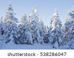 snow covered spruces. winter... | Shutterstock . vector #538286047