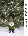 Gnome With Green Suit And Hat...