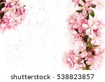 spa sea salt and flower branch... | Shutterstock . vector #538823857