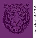 tiger head  cat  wild  animal.... | Shutterstock .eps vector #538963957