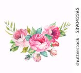 watercolor vintage floral... | Shutterstock . vector #539042263
