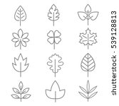 leaf thin line icons. linear... | Shutterstock . vector #539128813