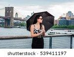 raining day   grainy  foggy ... | Shutterstock . vector #539411197