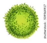 beautiful green wreath of...   Shutterstock . vector #539564917
