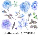 spring set vintage watercolor... | Shutterstock . vector #539634043