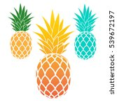 Set Of Pineapples. Exotic Frui...