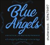 handwritten calligraphy  font... | Shutterstock .eps vector #539675497