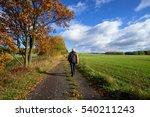 pedestrian on the road between... | Shutterstock . vector #540211243
