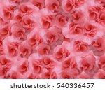 small flowers geranium bright... | Shutterstock . vector #540336457