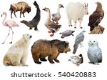 set of various north american... | Shutterstock . vector #540420883