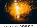 autumn landscape image | Shutterstock . vector #540423523
