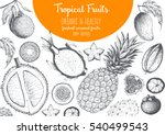 tropical fruits top view frame. ... | Shutterstock .eps vector #540499543