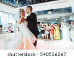 happy bride and groom and their ... | Shutterstock . vector #540526267