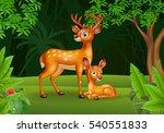 cartoon deer with her calf | Shutterstock .eps vector #540551833