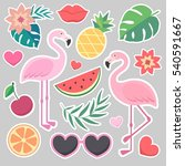 vector stickers   palm leaves ... | Shutterstock .eps vector #540591667