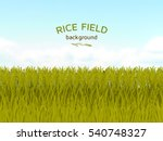 rice field and blue sky... | Shutterstock .eps vector #540748327
