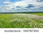 summer landscape with a field ... | Shutterstock . vector #540787303