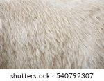 brown bear hair texture...   Shutterstock . vector #540792307