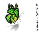 beautiful green and yellow... | Shutterstock . vector #540924127