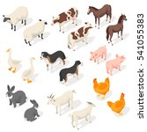 Stock vector isometric d vector set of farm animals back and front view icon for web isolated on white 541055383