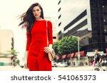 beautiful brunette young woman... | Shutterstock . vector #541065373