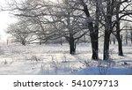 trees in snow winter field... | Shutterstock . vector #541079713