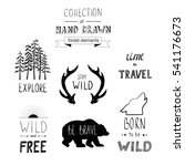 Hand Drawn Vector Forest...