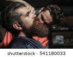 handsome bearded man  hipster ... | Shutterstock . vector #541180033