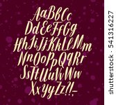 hand drawn elegant calligraphy... | Shutterstock .eps vector #541316227