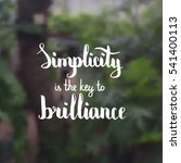 simplicity is the key to... | Shutterstock .eps vector #541400113