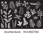 hand drawn vintage floral... | Shutterstock . vector #541483783