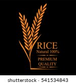 grain organic natural product... | Shutterstock .eps vector #541534843
