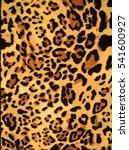 leopards skin illustration | Shutterstock . vector #541600927