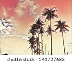 pink sky with coco palm tree... | Shutterstock . vector #541727683