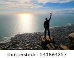 Cape Town Lion Head Black And...