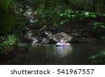 a hidden place. sleeping woman... | Shutterstock . vector #541967557