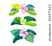 watercolor tropical flower... | Shutterstock . vector #541977613