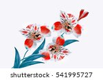 colorful bright flowers... | Shutterstock . vector #541995727