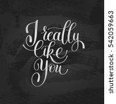 love letter  i really like you  ... | Shutterstock .eps vector #542059663