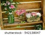 Beautiful Flowers In Unusual...