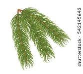 Pine Branch.vector Illustration