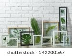 White Frames With Green Leaves...